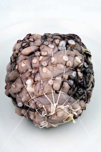 Fresh octopus in a net (for carpaccio)