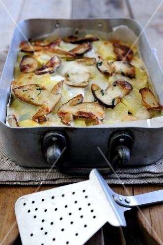 Porcini mushroom and potato lasagna