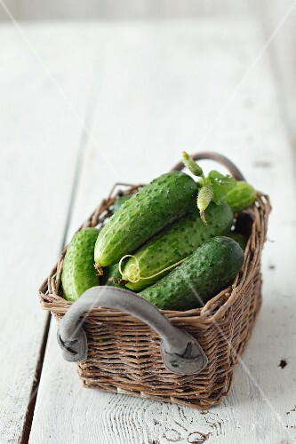 A basket of gherkins