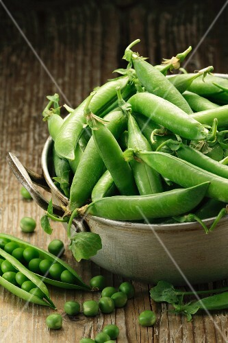 Fresh pea pods in a metal bowl