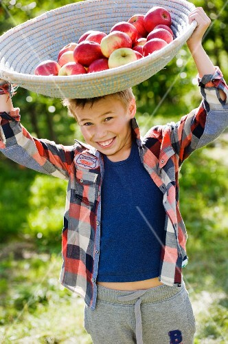 A boy balancing a basket of apples on his head