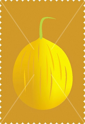 A muskmelon against against a dark-yellow background (illustration)