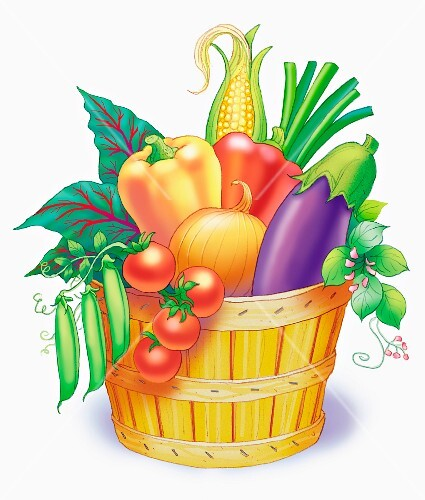 A basket of vegetables (illustration)
