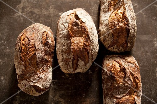 Four loaves of country bread
