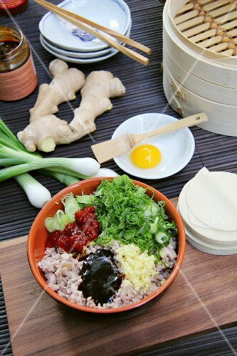 Ingredients for dim sum (pork belly, ginger, spring onions, egg, gyoza pastry)
