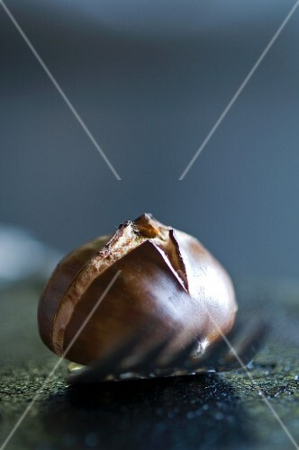 A roasted chestnut on a fork (close-up)