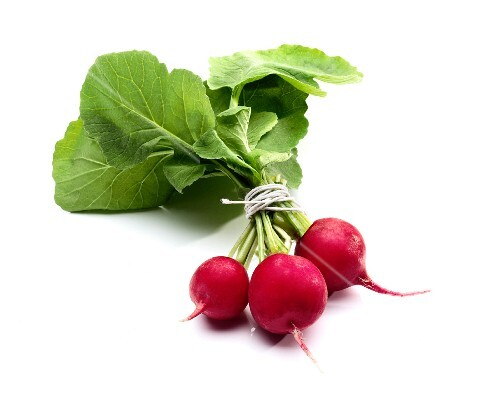 Three Fresh Red Radishes