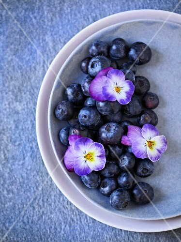 Blueberries with pansies on a plate, viewed from above