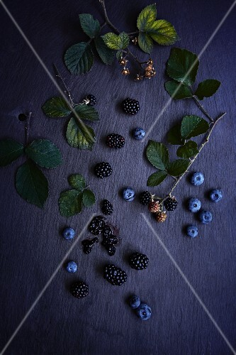 Blueberries and blackberries with bramble stems