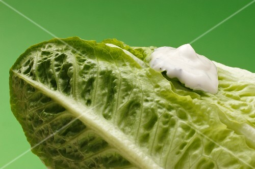 Romaine lettuce and yogurt dressing