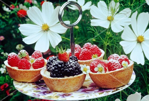 blackberry and rasberry tarts on a plate outside