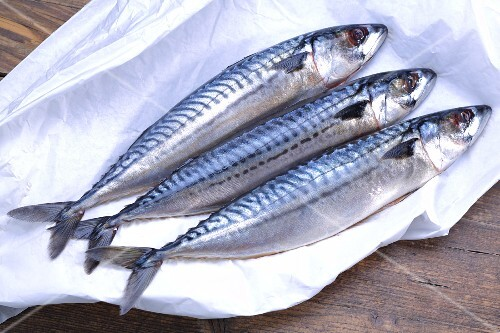 Three fresh mackerel on paper