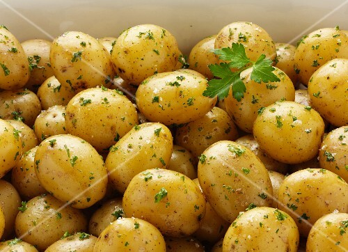 Vildmose potatoes with parsley