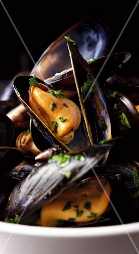 Steamed mussels with herbs (close-up)