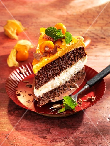 A slice of sea buckthorn and physalis layer cake