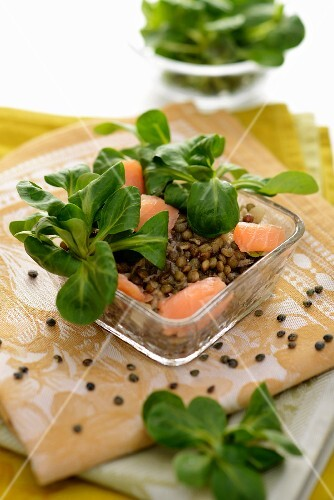 Lentil salad with salmon and lamb's lettuce