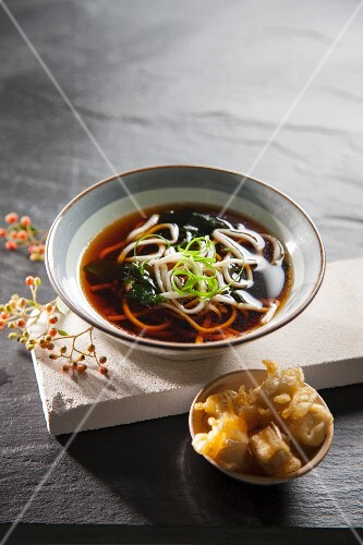 Noodle soup with tofu tempura (Japan)