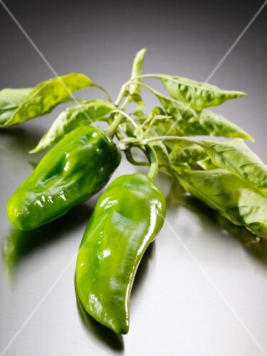 Fresh green chillies with leaves