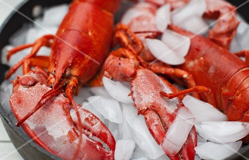 Boiled lobster on ice