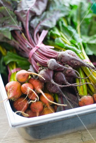 Red and Golden Beetroot