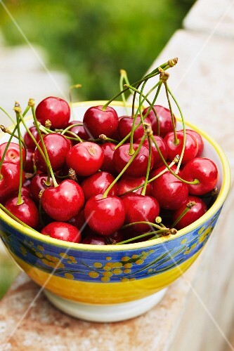 Cherries in a Decorative Bowl