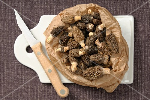 Fresh morels in a paper bag