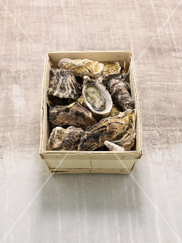A box of French Fines de Claire oysters