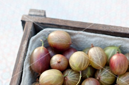 Gooseberries in a wooden crate