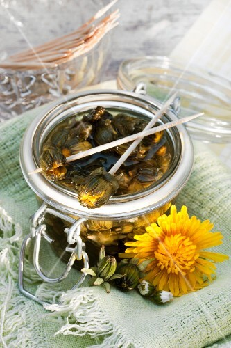 Glass jar of mock capers made from pickled dandelion and daisy buds; two skewered on cocktail sticks