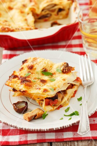 Lasagna with porcini mushrooms and tomatoes