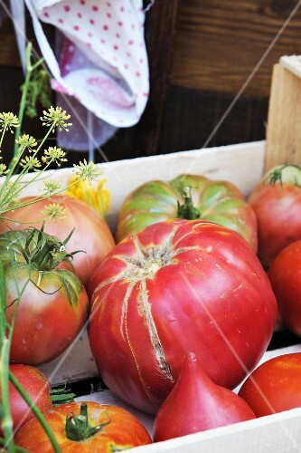 Beef tomatoes from Calabria (variety: Belmonte)