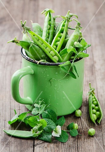 Fresh pea pods in a green enamel pot