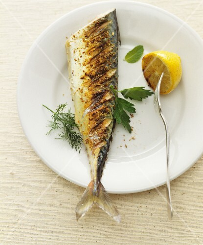 Grilled mackerel (view from above)