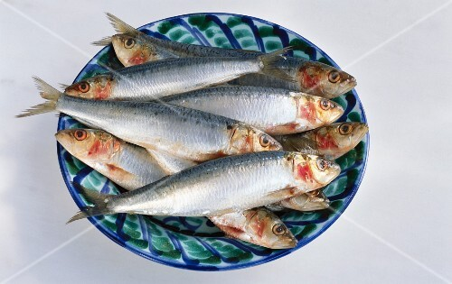 Several fresh sardines on a blue and green plate