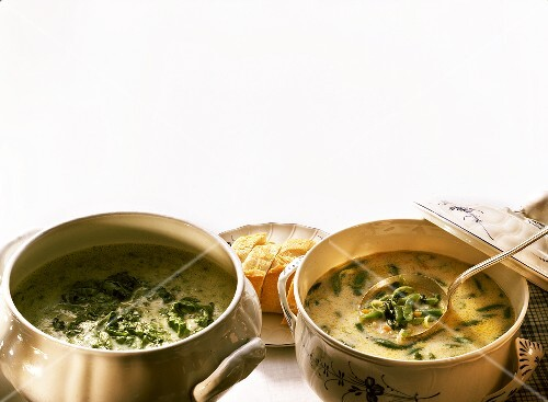 Lettuce soup from Belgium & green bean soup from ...