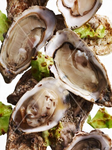 Fines de Claire oysters with cabbage and turnip