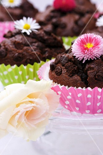 Chocolate muffins decorated with flowers