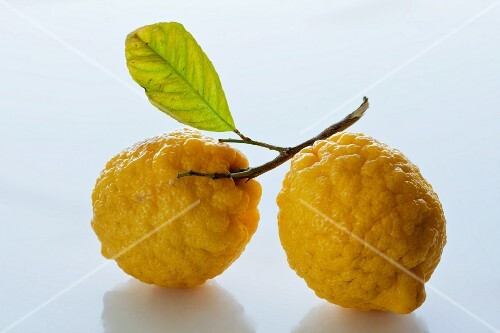 Two lemons with leaf