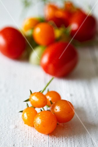 Assorted tomatoes on a white-painted wooden table