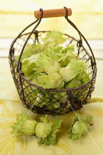 Whole hazelnuts in a wire basket