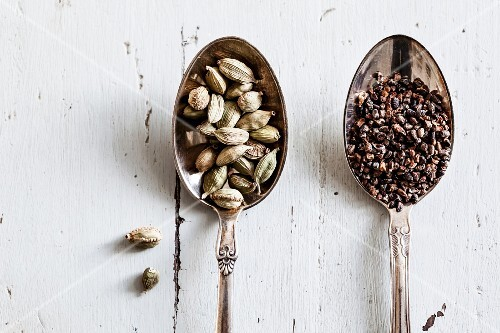 Cardamom on silver spoons