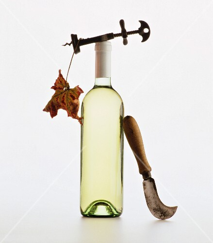 A bottle of white wine with a corkscrew, vine leaf and a knife