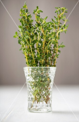 Fresh thyme in a glass of water