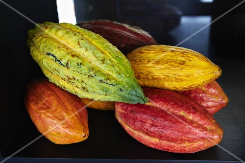 Several cocoa pods (close up)
