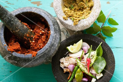 An arrangement of Thai spices with red and green curry paste