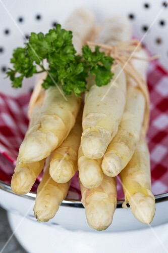 A bunch of white asparagus with parsley in a colander