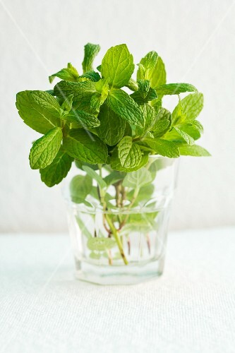 A glass of fresh peppermint