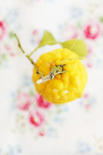 A lemon with a stem and leaves against an out-of-focus floral tablecloth