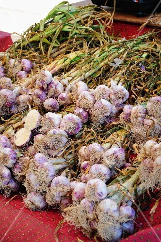 Bundles of garlic on a market stand
