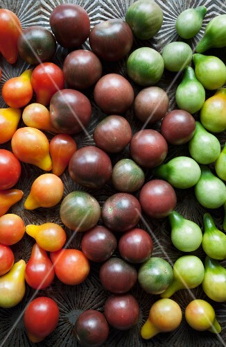 Various different ocloured cherry tomatoes (seen from above)